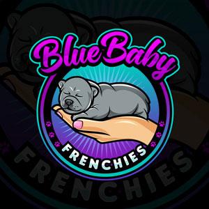Grande Prairie Blue Baby Frenchies's Logo